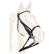 Leather double bridle - economical